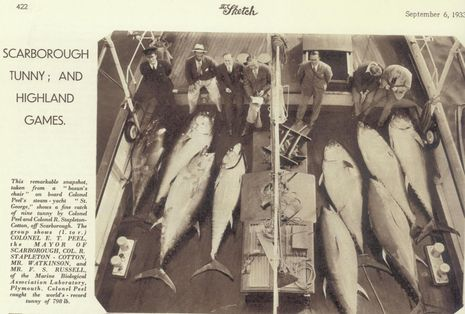 Scotland_tuna_fishing_1933_courtesy_Airmar.jpg