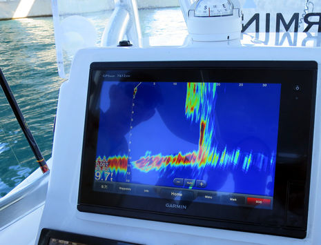 MIBS2015_Garmin_Panoptix_in_action_cPanbo.jpg