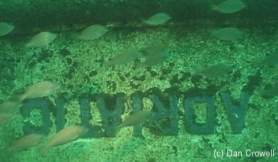 Adriatic_name_on_bow_from_njscuba